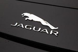 Amerikanac tuži Jaguar zbog neispravnog 'soft close' mehanizma koji mu je prouzročio ozlijedu