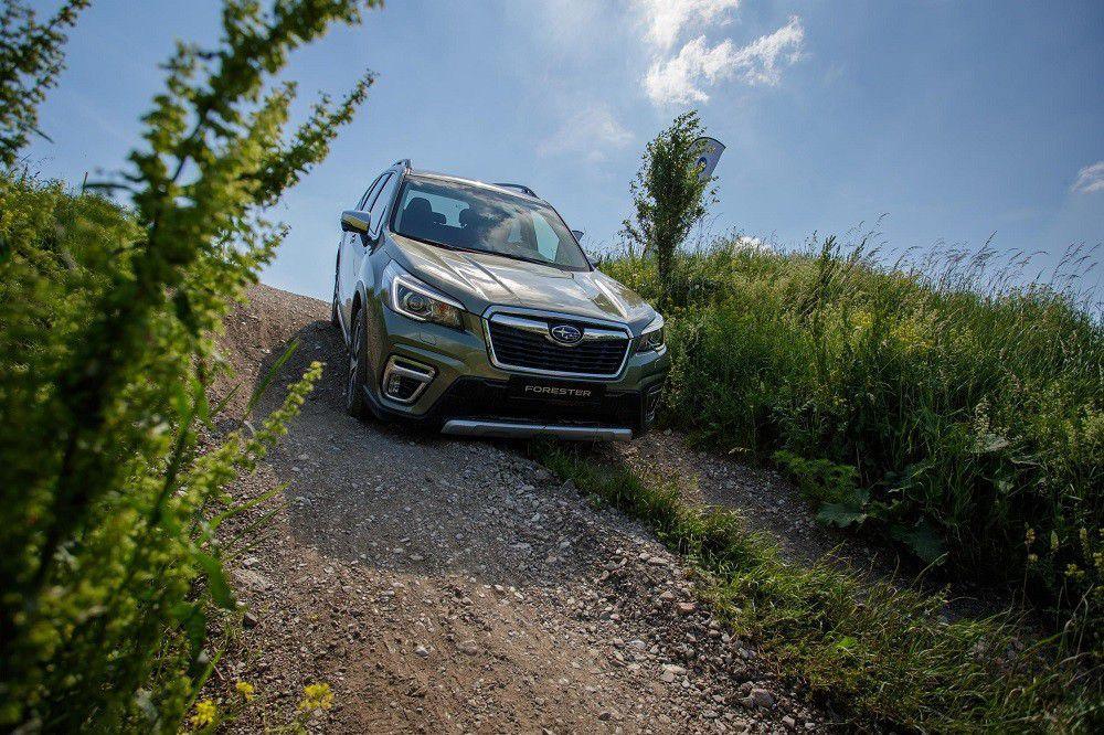 Subaru forester eboxer driveteam